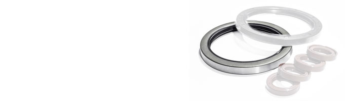 Type B Oil Seals and Rotary Seals at Polymax