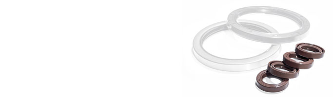 Type F Oil Seals and Rotary Seals at Polymax